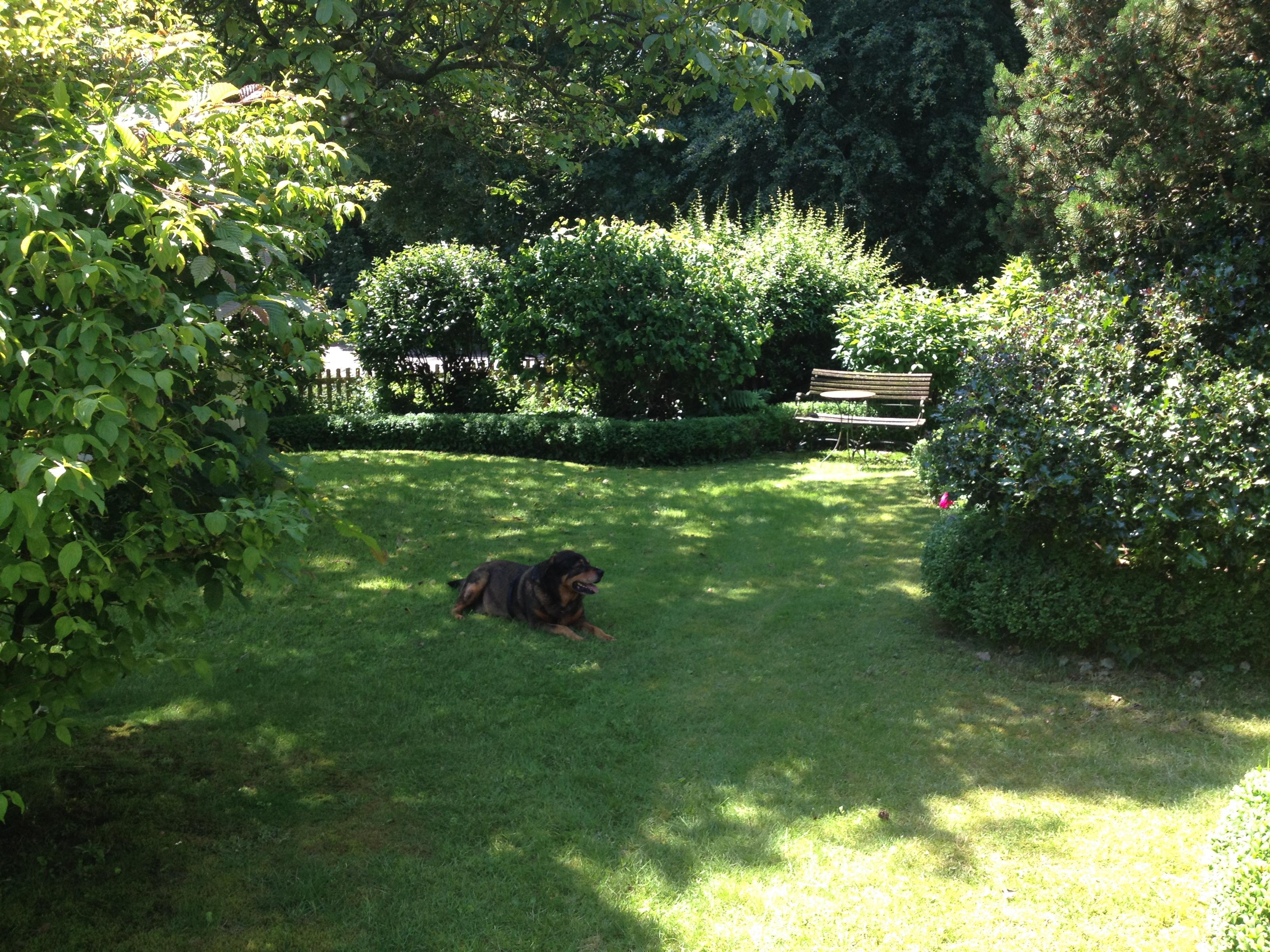 Schöner Garten: auch für den Urlaub mit Hund